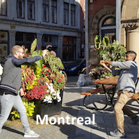 Montreal Scavenger Hunt